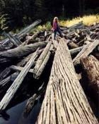 hiking1 1